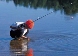 Catawba island lake erie ohio state park for Lake erie pier fishing